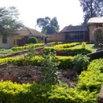 Same campus in Uganda after introduction of permaculture