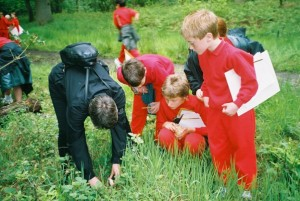 children's bug hunt